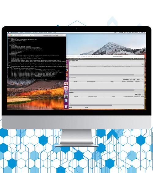 Infotronik Progetti Software Reverse Engineering ed Aggiornamento Software Obsoleto Galleria