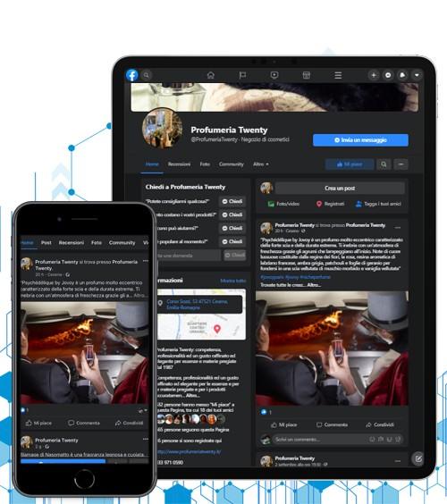 Infotronik Social Networks Twenty website